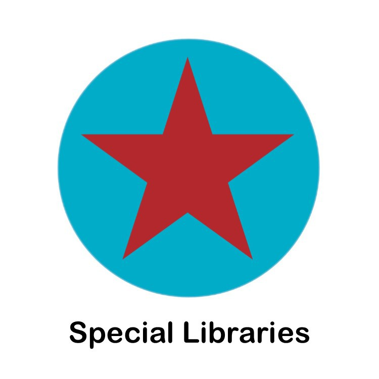 Special Libraries Icon