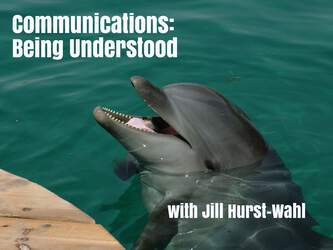 Communications: Being Understood 6277