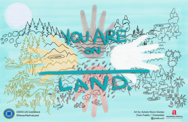 Library Services for Indigenous Peoples: From Land Acknowledgement to Outreach 6324
